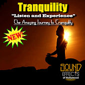 Tranquility - Listen And Experience The Amazing Journey To Tranquility by Tranquility