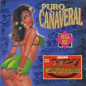 Puro Cañaveral Mega Mix by Grupo Cañaveral