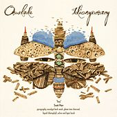 Idiosyncracy by Osunlade