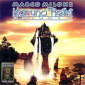 Karuna Reiki Volume 1 by Marco Milone