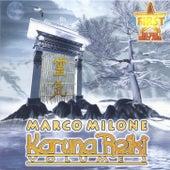 Karuna Reiki Volume 2 by Marco Milone