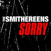 Sorry by The Smithereens