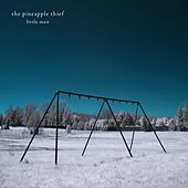 Little Man by Pineapple Thief