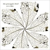 3000 Days by Pineapple Thief