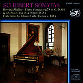 Schubert: Sonatas on Fritz Viennese Fortepiano by Howard Shelley