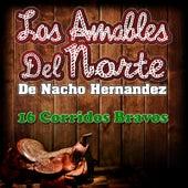 Corridos Bravos by Los Amables Del Norte