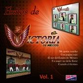 Exitos de La Victoria de Mexico: Volume 1 by La Victoria de Mexico