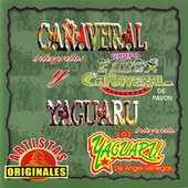 Cañaveral Yaguaru by Various Artists