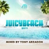 Juicy Beach 2011 by Various Artists
