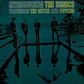 Introducing The Sonics by The Sonics