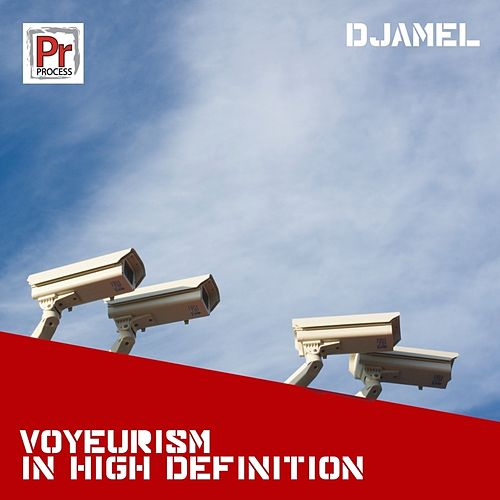Voyeurism In High Definition by Djamel (Electronic)