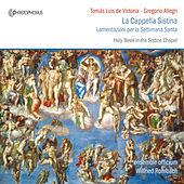 La Cappella Sistina by Wilfried Rombach