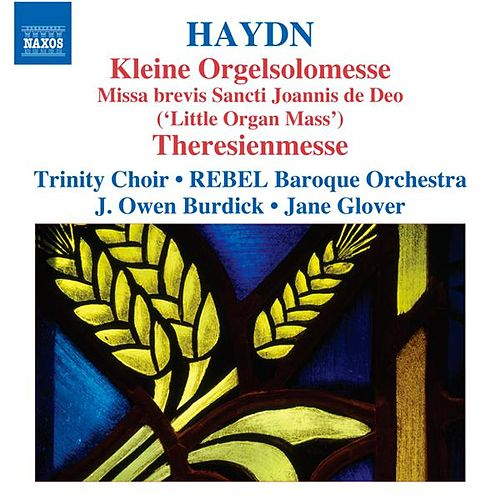 Haydn: Kleine Orgelsolomesse - Theresienmesse by Various Artists