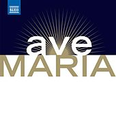 Ave Maria - Les Plus Beaux Ave Maria Et Chants A La Vierge (The Most Beautiful Ave Marias and Songs To the Virgin) von Various Artists