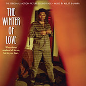 The Winter Of Love by Various Artists