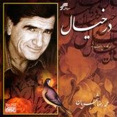 Dar Khiyal by Mohammadreza Shajarian