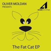 Fat Cat Ep by Oliver Moldan