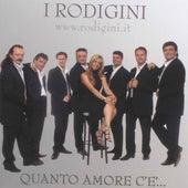 Quanto amore c'è by I Rodigini