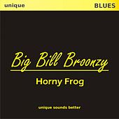 Horny Frog by Big Bill Broonzy