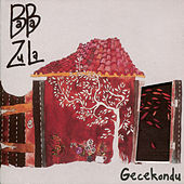 Gecekondu by Baba Zula