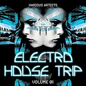 Electro House Trip, Vol. 1 by Various Artists