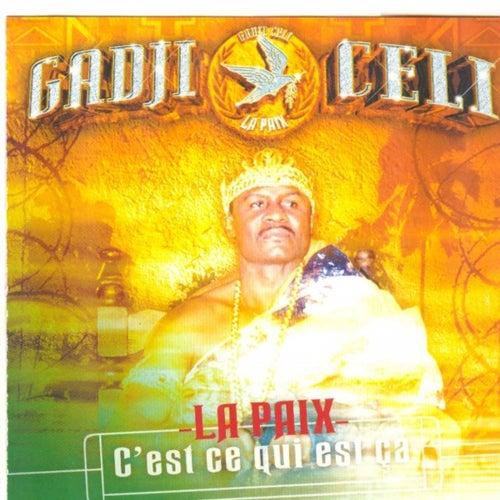 La paix, c'est ce qui est ça by Gadji Celi