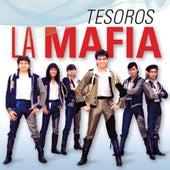 Tesoros by La Mafia