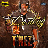 Destiny by T'Nez