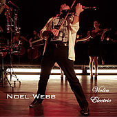 Violin Electric by Noel Webb