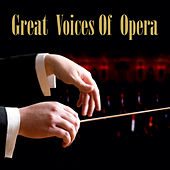 Great Voices Of Opera by Various Artists