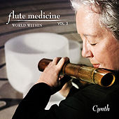 Flute Medicine, Vol. 3 World Within by Cynth