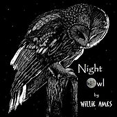 Night Owl (feat. Drew Sadler, Way Deep & Philip Rohr) by Willie Ames