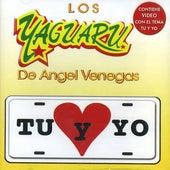Tu Y Yo by Los Yaguaru