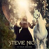 In Your Dreams by Stevie Nicks