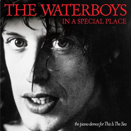 In a Special Place (the piano demos for This Is The Sea) von The Waterboys