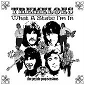 What A State I'm In: The Psych-Pop Sessions by The Tremeloes