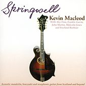 Springwell by Kevin MacLeod