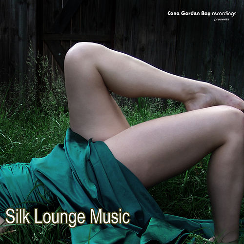 Silk Lounge Music by Various Artists