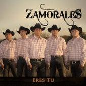 Eres Tu by Zamorales