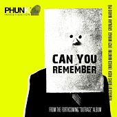 Can You Remember by Phunk Investigation