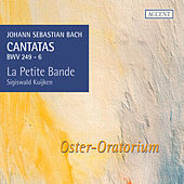 Bach: Cantatas for the Complete Ligurgical Year, Vol. 13 by Various Artists