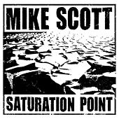 Saturation Point by Mike Scott