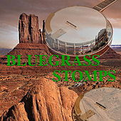 Bluegrass Stomps by Various Artists