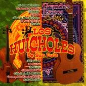 Grandes Exitos en Mix by Los Huicholes de San Luis