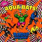 Radio Down! by The Aquabats