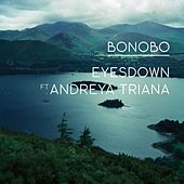 Eyesdown feat. Andreya Triana by Bonobo