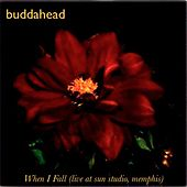 When I Fall (live At Sun Studio, Memphis) - Single by Buddahead