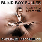 A Cryin Shame by Blind Boy Fuller
