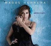 Mexico Azul by Magos Herrera