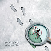 Step in 2 My World by Seven Steps to the Green Door